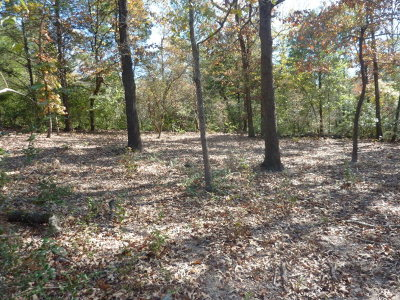 Athens Acreage For Sale: 3551 Loop 7