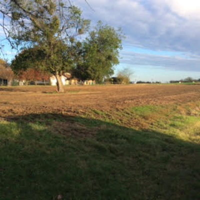 Mabank Residential Lots & Land For Sale: 105 Blake