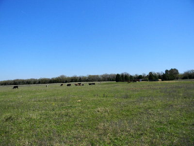 Acreage For Sale: 8306 Fm 2494