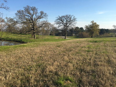 Athens Residential Lots & Land For Sale: Early Morning Drive