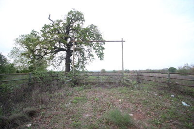Athens Acreage For Sale: 3651 SW Loop 7