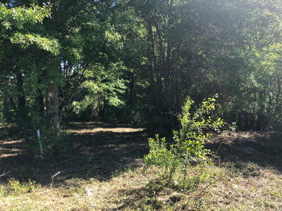 Residential Lots & Land For Sale: Lone Pine