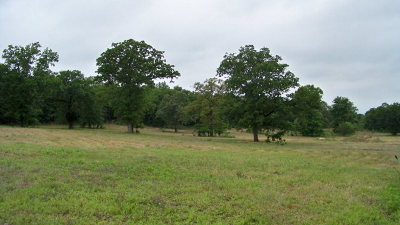 Acreage For Sale: 12390 Hwy 59