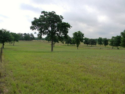 Acreage For Sale: 7664 Ranch Road