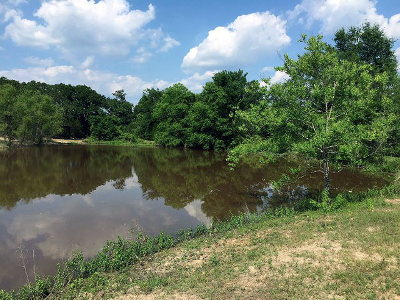Athens Acreage For Sale: County Road 1405
