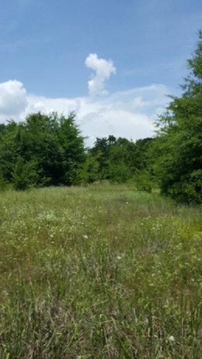 Residential Lots & Land For Sale: 1312 Utopia Road