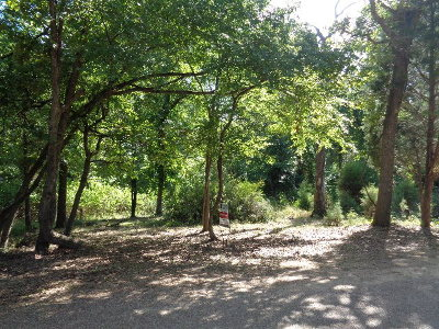 Residential Lots & Land For Sale: Hickory Street