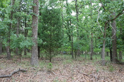 Mabank Residential Lots & Land For Sale: 108 Oakview Tr