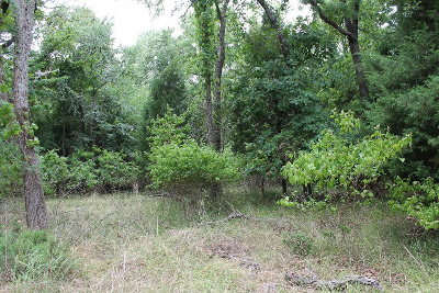 Mabank Residential Lots & Land For Sale: 112 Oakview Tr