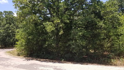 Malakoff Residential Lots & Land For Sale: Harris Boulevard