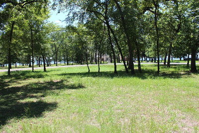 Mabank Residential Lots & Land For Sale: Diamond Point