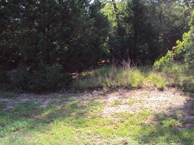 Murchison Residential Lots & Land For Sale: Tbd Maple Drive