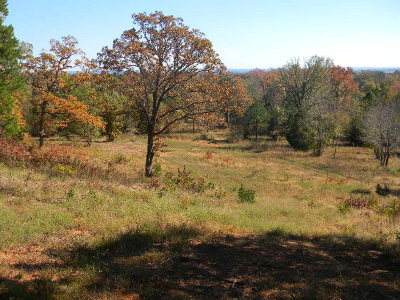 Acreage For Sale: 9355 County Road 3426