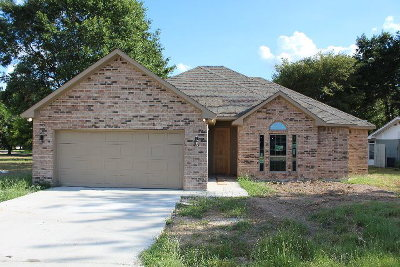 Single Family Home For Sale: 77 Starview Drive