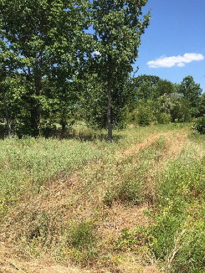 Residential Lots & Land For Sale: 10712 Pr 6902