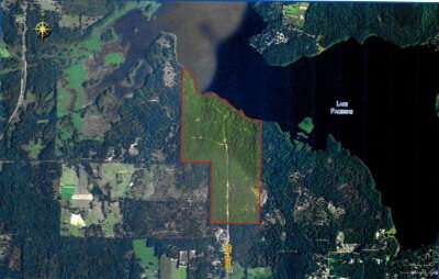 Acreage For Sale: 2900 County Road 4316