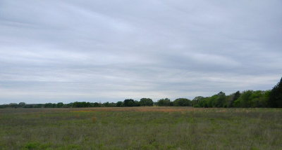 Acreage For Sale: 6 County Road 3614