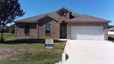 Single Family Home For Sale: 325 Port Drive