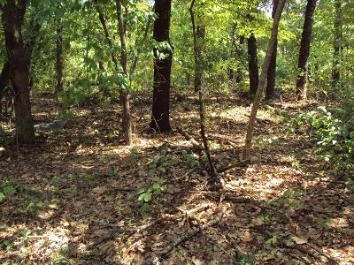 Murchison Residential Lots & Land For Sale: Timber Grove