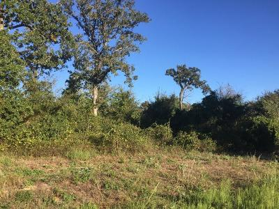 Athens Acreage For Sale: 11020 County Road 3909