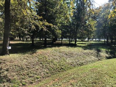 Mabank Residential Lots & Land For Sale: 117 Diamond Point