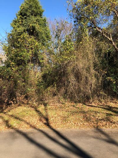 Mabank Residential Lots & Land For Sale: 172 Lynn Creek