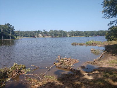 Acreage For Sale: Lot 203 Waters Edge Drive