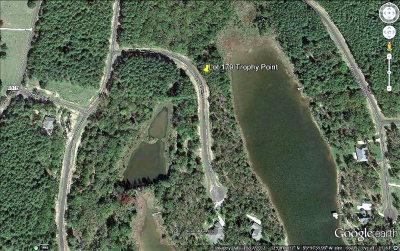 Acreage For Sale: Lot 179 Trophy Point