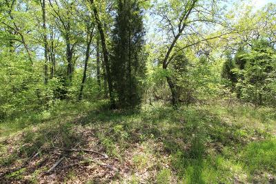 Residential Lots & Land For Sale: 14071 Bull Run