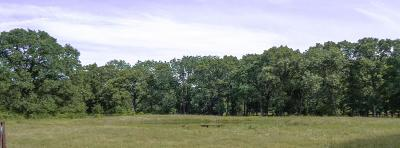 Mabank Acreage For Sale: 377 Vzcr 2714