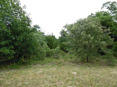Athens Residential Lots & Land For Sale: L 174 Charlya Drive