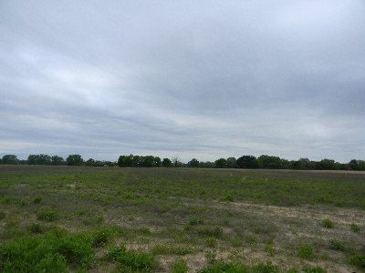 Acreage For Sale: County Road 3614