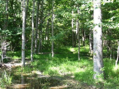 Larue Acreage For Sale: Lot 402 Mallard Way