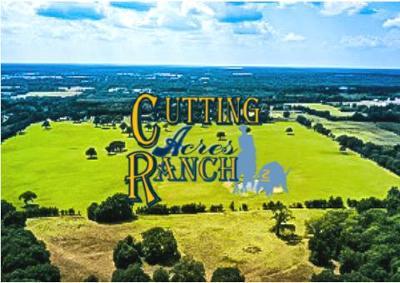 Athens TX Acreage For Sale: $475,000