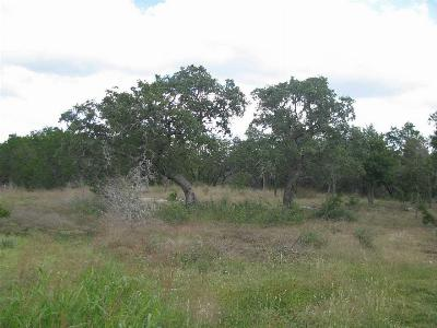 Marble Falls Residential Lots & Land For Sale: 320 Capstone