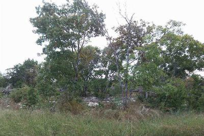 Residential Lots & Land For Sale: Cr 250