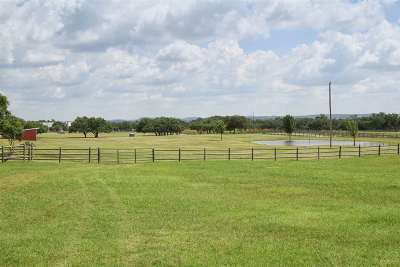 Spicewood Single Family Home For Sale: 813 Rustic