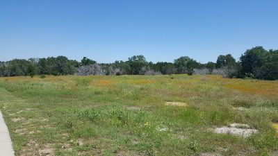 Marble Falls Residential Lots & Land For Sale: Lot 43 Capstone
