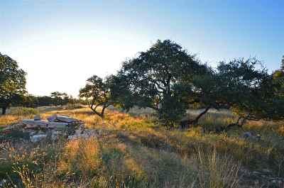 Horseshoe Bay Farm & Ranch For Sale: 3340 W Sh 71