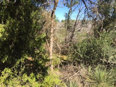 Residential Lots & Land For Sale: Lot 713 Spring