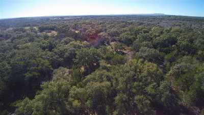 Marble Falls Farm & Ranch For Sale: E. Fm 2147