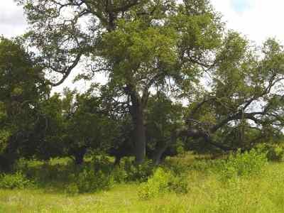 Burnet Farm & Ranch For Sale: 109 Cr 116