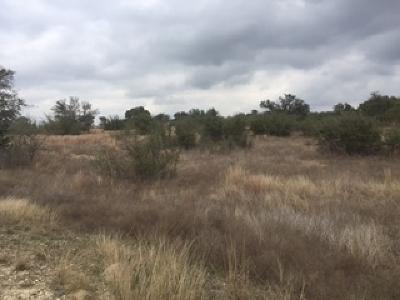 Johnson City Residential Lots & Land For Sale: Lot 87 Summit Ridge Trail