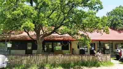 Fredericksburg Farm & Ranch For Sale: 497 Luckenbach