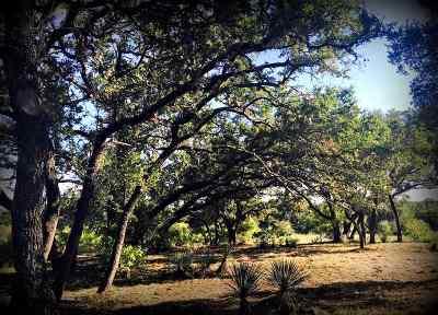 Marble Falls Farm & Ranch Pending-Taking Backups: 10516 E Fm 1431