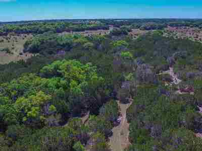 Burnet Farm & Ranch For Sale: Tract 36 Cr 200a