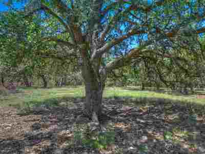 Fredericksburg Farm & Ranch For Sale: Tract A Adj