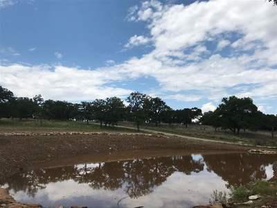 Fredericksburg Farm & Ranch For Sale: Tract C Adj