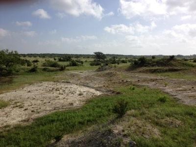 Lampasas Farm & Ranch For Sale: Tract 12, 13 000 Cr 1255