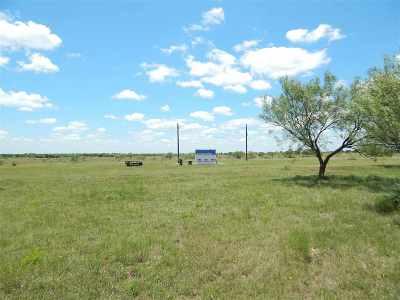 Burnet County Farm & Ranch For Sale: 1747 Cr 276